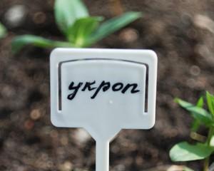 Табличка для посадки растений